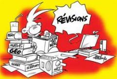 revision.jpg